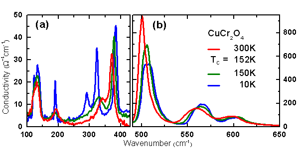 Figure 2: Phonon spectrum of CuCr2O4